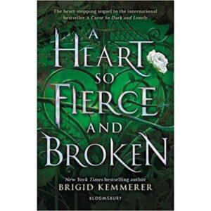 heart oso fierce and broken book